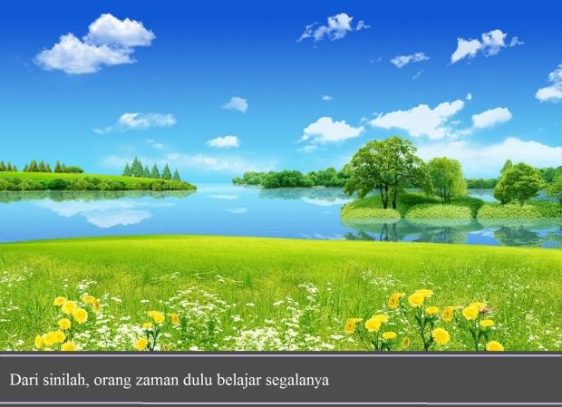 summer_dreamland-wide